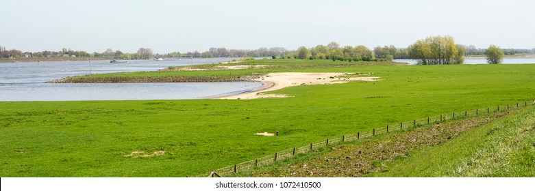 Typical Dutch river Waal panorama landscape with trees, green grass, water. Picture is taken on a nice day in spring. Ideal area for walking, hiking and enjoying Dutch rural environment