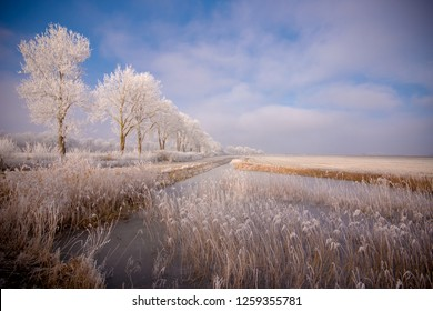 Typical Dutch winter landscape of a polder with a frozen stream in the Netherlands. It is cold beautiful winters day, with white clouds against a blue sky, white frozen tree line and narrow river