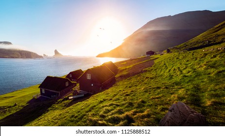 typical faroese houses with green roofs in a scenic sunset scene in the early summer on the Faroe Islands