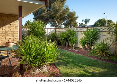 A typical front yard garden of Australian homes with low maintenance Yucca trees and panel fencing.