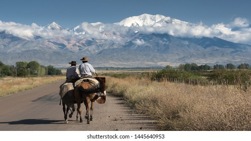 Typical gauchos riding horses near to the Andes mountains