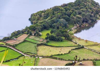 Typical hilly terrain near the Lake of Sete Cidades on Sao Miguel island of Azores (Açores), Portugal, fully covered by greenery and some agricultural areas. Cows on a meadow