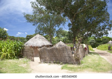 The typical house and yard in village Zimbabwe. Africa.
