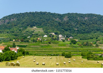 A typical hungarian agricultural landscape at Badacsony, Hungary