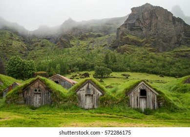 Typical icelandic houses covered with grass