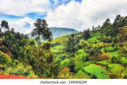 Typical landscape in the borderlands between Uganda and Rwanda