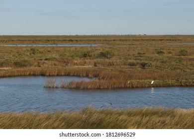 Typical landscape near Freeport, Texas
