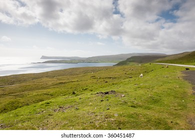 Typical landscape on the Faroe Islands, with green grass and rocks on Sandoy close to Sandur