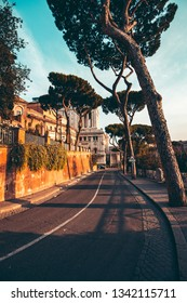 A typical landscape of Rome with tall trees and ancient buildings