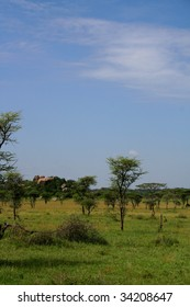 Typical landscape of serengeti national park in tanzania, africa