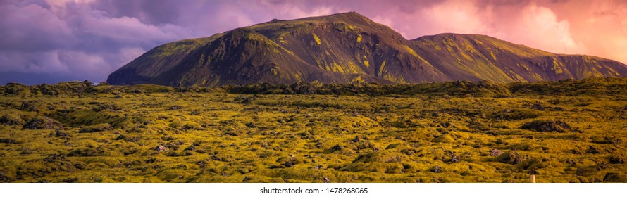 Typical landscape of the spectacular moss fields of Eldhraun moss covering lava rock) in the south of Iceland.