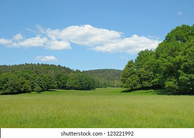 Typical landscape of Walloon, Belgium with forest and field in bright summer day