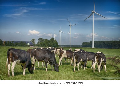 typical modern dutch landscape with a farm with solarenergy and windturbines