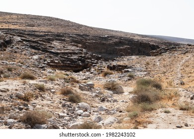 typical Negev Desert landscape southeast of Arad in Israel showing a canyon formed by chert flint layers with chunks of chalk in the foreground