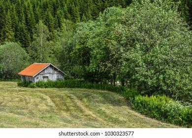 Typical Norwegian nature. Taken during summer 2017.