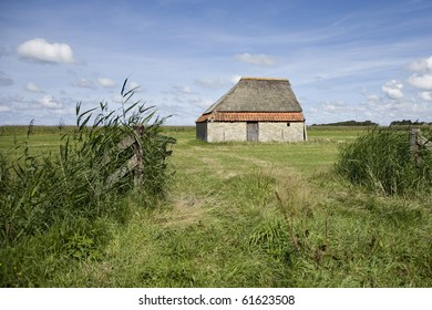 Typical old barn in a meadow at the Dutch flat island of Texel