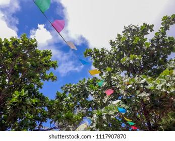 Typical party - Feast of Saint John - Festa Junina - Arembepe - Brazil