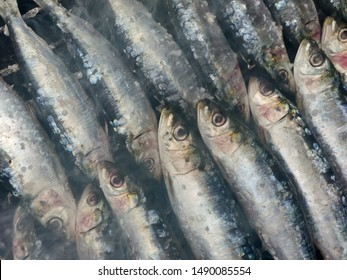 Typical Portuguese fresh grilled sardines.