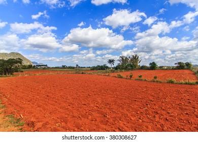 Typical red soil near Vinales town, Cuba