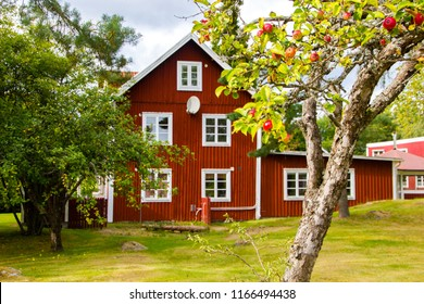 A typical red and white Scandinavian house for a family on the countryside in Sweden with a lot of garden around it