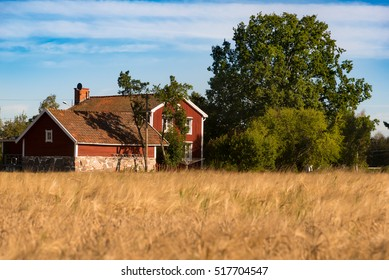 Typical red wooden houses of the small village Staby in southeast Sweden surrounded by cereal fields