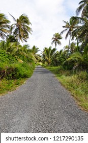 Typical road on the island of Ouvea in New Caledonia. France.