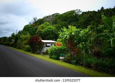 Typical road scenery at Huahine - Huahine, French Polynesiaf