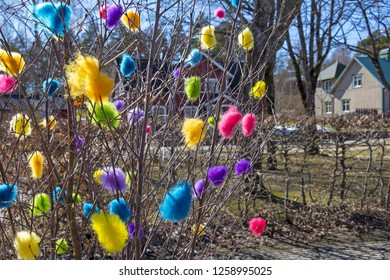 A typical Scandinavian easter custom to decorate branches with colored feathers or cotton wool. Spring landscape in Sweden.