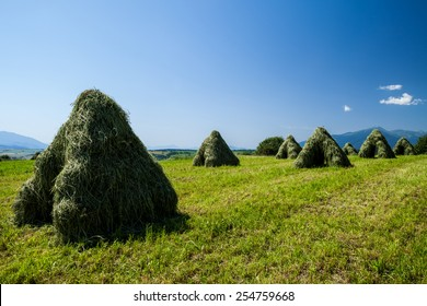 Typical Slovak haystack in rural area in summer - Vychodna, Slovakia - Shutterstock ID 254759668