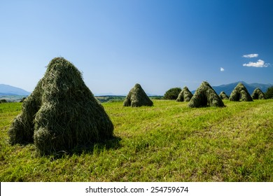 Typical Slovak haystack in rural area in summer - Vychodna, Slovakia - Shutterstock ID 254759674