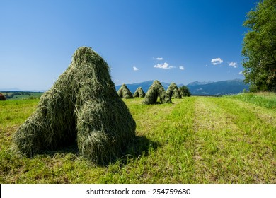Typical Slovak haystack in rural area in summer - Vychodna, Slovakia - Shutterstock ID 254759680