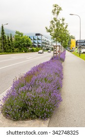 Typical street with flowers in Vaduz, Lichtenstein