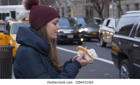 Typical street food in New York the famous hot dog