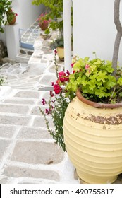 typical street scene with geraniums in pot on stone streets with white paint Lefkes, Paros Greek Island, Cyclades, Greece