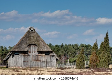 Typical thatched sheepfold in the nature reserve Lueneburg Heath which offers space for 350 sheep. Each flock of sheep has two of these stables, one near the village and one outside in the heath.