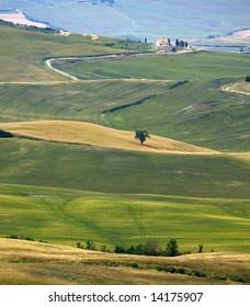 typical Tuscany landscape