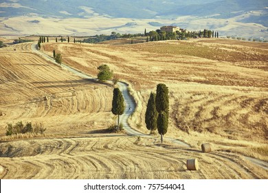Typical Tuscany Lanscape around city Siena, Italy,  captured in summer JUL 2017 after harvest. The road with cypees trees is know as gladiators road from the feature film Gladiator.