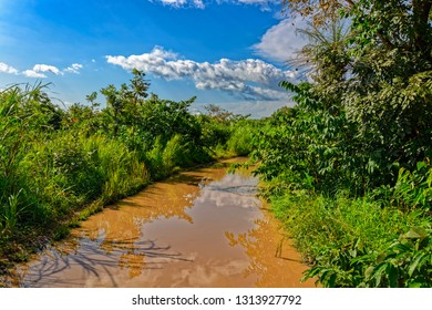 Typical unpaved rough rain-flooded road in woodland in Guinea countryside, West Africa.