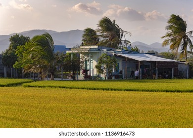 Typical Vietnamese houses in rural areas of the country,Vietnam