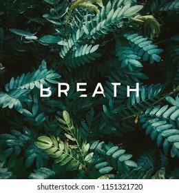 Typography wallpaper Breath