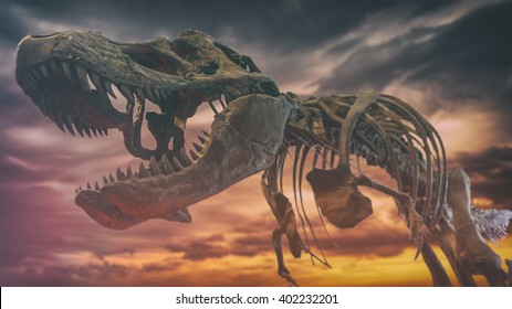 Tyrannosaurus Rex Dinosaur Fossil Extinction. A tyrannosaurus rex dinosaur fossil skull against a background of dark gloomy skies, extinction event.