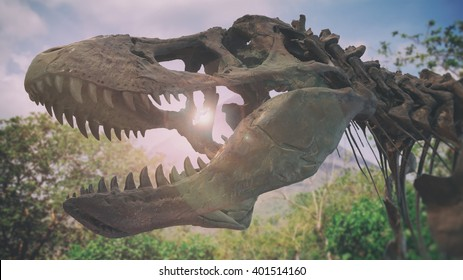 Tyrannosaurus Rex Dinosaur Fossil Tropical. A tyrannosaurus rex dinosaur fossil skull against a background of a tropical jungle.