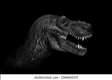 Tyrannosaurus Rex dinosaurs close up on dark background.
