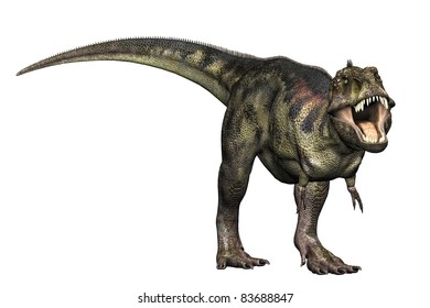 Tyrannosaurus Rex full body Illustration of dinosaur in aggressive challenging position. Isolated, clip art cutout on clean white background.