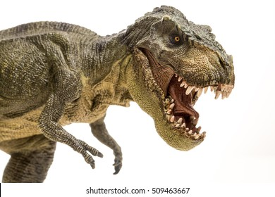 Tyrannosaurus rex isolated in white