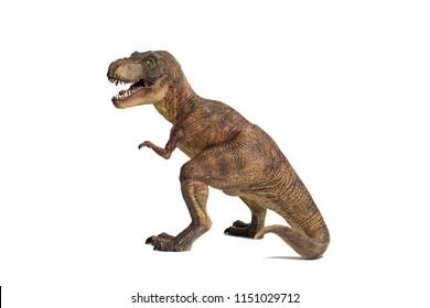 Tyrannosaurus rex on white background