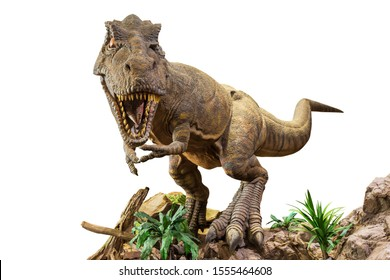 Tyrannosaurus rex . T-rex is walking , growling and open mouth on rock . White isolated background . Embedded clipping paths .