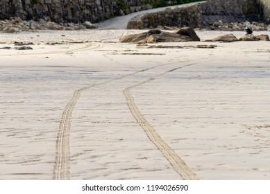 Tyre tracks across a deserted, sandy, beach