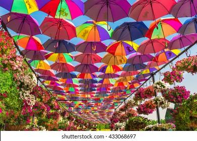 UAE, DUBAI - DECEMBER 30: multicolor umbrellas roof in Dubai miracle garden on December 30, 2014