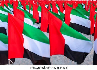 UAE flags as seen in the Flags Garden in Dubai Kite beach.
